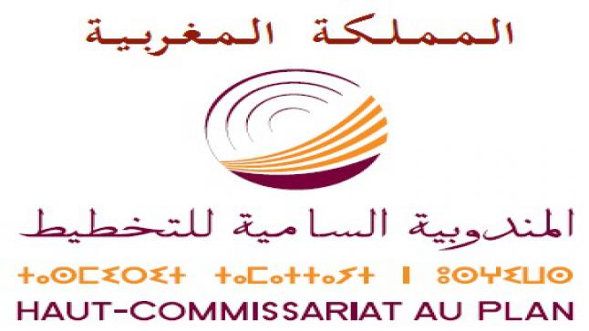 المندوبية السامية للتخطيط تجري بحثا وطنيا حول تأثير الجائحة على الأسر المغربية